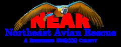 Northeast Avian Rescue